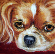 Spaniels Paintings - Cavalier King Charles Spaniel by Enzie Shahmiri