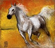 Animals Pastels Originals - Cavallo arabo by Alessandro Andreuccetti
