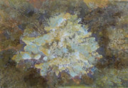 Relief Print Originals - Cavern Coral by Tim Tanis
