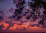 Tropical Photographs Prints - Cayman Islands Twilight Print by James Brooker
