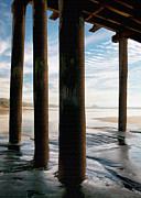 Piers Prints - Cayucos Pier Print by Sharon Foster