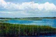 Florida Marsh Mixed Media Originals - Cedar Key 2 by Bob Senesac