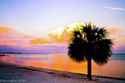 Cedar Key Prints - Cedar Key Sunset Print by Shannon Harrington