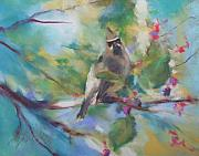 Wax Pastels Posters - Cedar Wax Wing and Elderberries Poster by Debbie Anderson