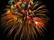 Yellow Fireworks Prints - Celebrate Print by Rhonda Barrett