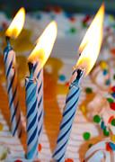 Shaileen Landsberg - Celebrate