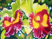 Floral Art Painting Framed Prints - Celebration Framed Print by Barbara Eberhart - Printscapes