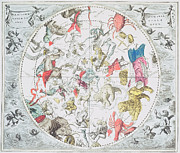 Antique Map Drawings - Celestial Planisphere Showing the Signs of the Zodiac by Andreas Cellarius