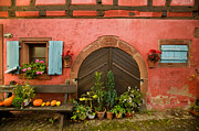 Alsace Prints - Cellar Door Print by John Galbo