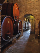 Wine Cellar Photos - Cellar by Mary Attard