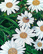 Knot Paintings - Celtic Daisy Patch by Gina Graham