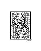 Border Drawings - Celtic Figure Eight by Kristen Fox