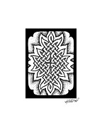 Border Drawings - Celtic Knotwork Afire by Kristen Fox