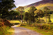 Best Selling Prints - Celtic Spirit in Color. Wicklow  Mountains. Ireland Print by Jenny Rainbow