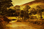 Celtic Spirit. Wicklow  Mountains. Ireland Print by Jenny Rainbow