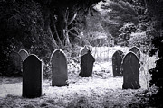 Halloween Art - Cemetery and snow by Jane Rix