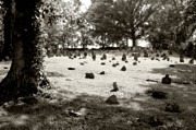 Cemetery At Mud Meeting House Print by Mark Jordan