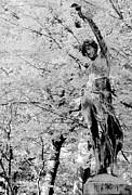 MB Matthews - Cemetery Dancer