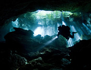 Backlit Prints - Cenote Diver Enters Taj Mahal Cavern Print by Karen Doody