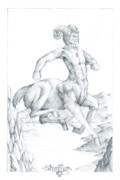 Extinct And Mythical Drawings Prints - Centaur 1 Print by Curtiss Shaffer