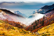 Autumn Landscape Framed Prints - Central Balkan National Park Framed Print by Evgeni Dinev