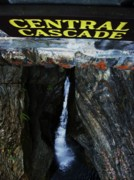 Shower Curtain Prints - Central Cascade Bridge View Print by InTheSane DotCom