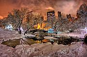 Central Park Winter Prints - Central Contrast Print by Joshua Ball
