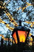 Lamp Photos - Central Park 6546 by PhotohogDesigns