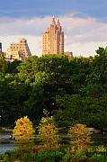 Photohogdesigns Prints - Central Park 7503 Print by PhotohogDesigns
