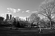 Frisbee Framed Prints - Central Park Framed Print by Andrew Dinh