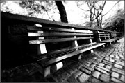 Park Benches Photos - Central Park Benches by Terry Shuck
