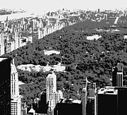 Central Park Digital Art Prints - Central Park BW3 Print by Scott Kelley