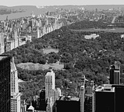 Central Park Digital Art Prints - Central Park BW6 Print by Scott Kelley