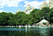 Sailboats In Water Prints - Central Park in the spring Print by Heather Kresge