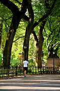 Jogging Prints - Central Park Jogging Print by Brian Jannsen