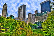 Central Park Prints - Central Park Lakeview Print by Randy Aveille