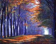Pathway Paintings - Central Park Light by David Lloyd Glover