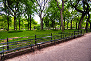 Park Benches Prints - Central Park Mall Print by Kelly Wade