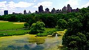 Central Park Prints - Central Park Manhattan III Print by Monique Wegmueller