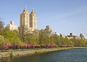 Spring Nyc Posters - Central Park Reservoir in Spring Poster by Ellen McKnight