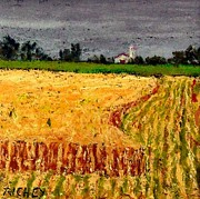 Amish Pastels Prints - Central Pennsylvania Summer Wheat Print by Bob Richey