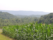 Amish Farms Photos - Centre Hall Pennsylvania Mountain Farming Landscape by JB Ronan