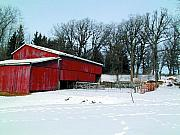 Shed Digital Art Metal Prints - Century Farm Shed in Snow Watercolor Metal Print by Laurie With