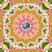 Circle Mandalas Framed Prints - Certainty Framed Print by Bell And Todd