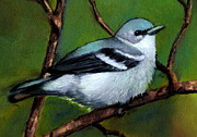 Bird Pastels - Cerulean Warbler in Oil Pastel No. 2 by Joyce Geleynse