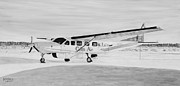 Plane Paintings - Cessna 208 Caravan black and white by Marilyn  McNish