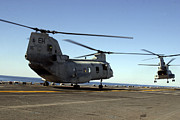 Rotary Wing Aircraft Photo Posters - Ch-46e Sea Knight Helicopters Practice Poster by Stocktrek Images