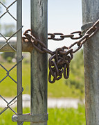 Chain Fence Posters - Chained Park Gate Poster by Thom Gourley/Flatbread Images, LLC
