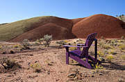 Adirondack Chair Posters - Chair in Desert Poster by David Buffington