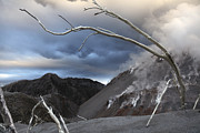Bare Trees Metal Prints - Chaiten Eruption, Steaming Dome, Los Metal Print by Martin Rietze